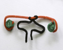 female genitals pipe cleaner-front